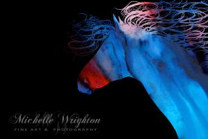 Colourful Abstract Wild Horse Silhouette in Red And Blue