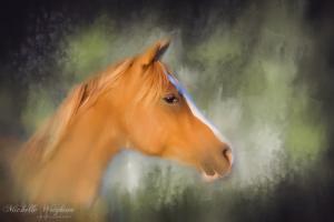 Inspiration – Horse Art