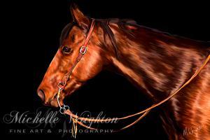 Quarterhorse Waiting His Turn