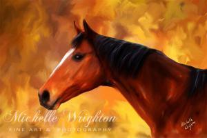 Summers End Quarter Horse