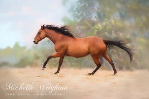 Galloping Thoroughbred Horse